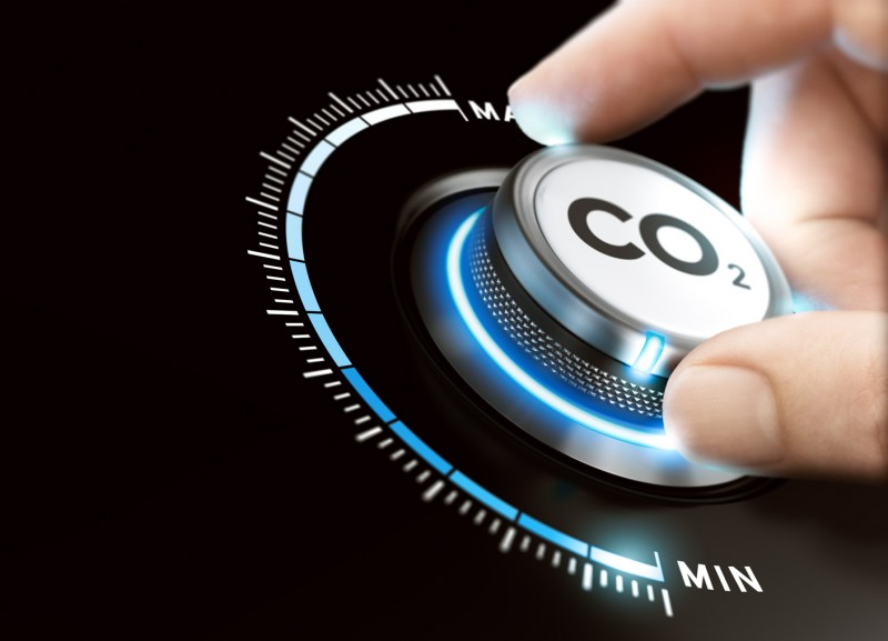Carbon Removal – The Underdog of Carbon Neutrality