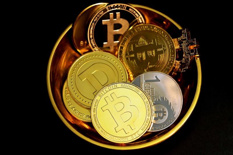 What Can a Newbie Crypto Portfolio Look Like?